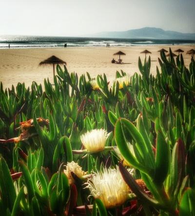 La lunghissima spiaggia di inizia da Tarifa e prosegue per 10 km.